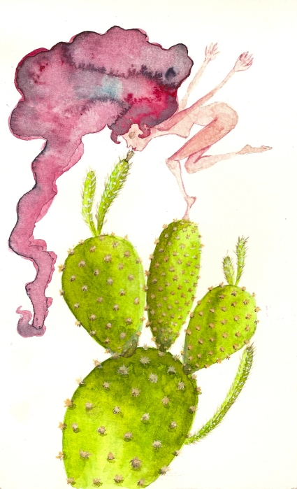 cicca kaktus